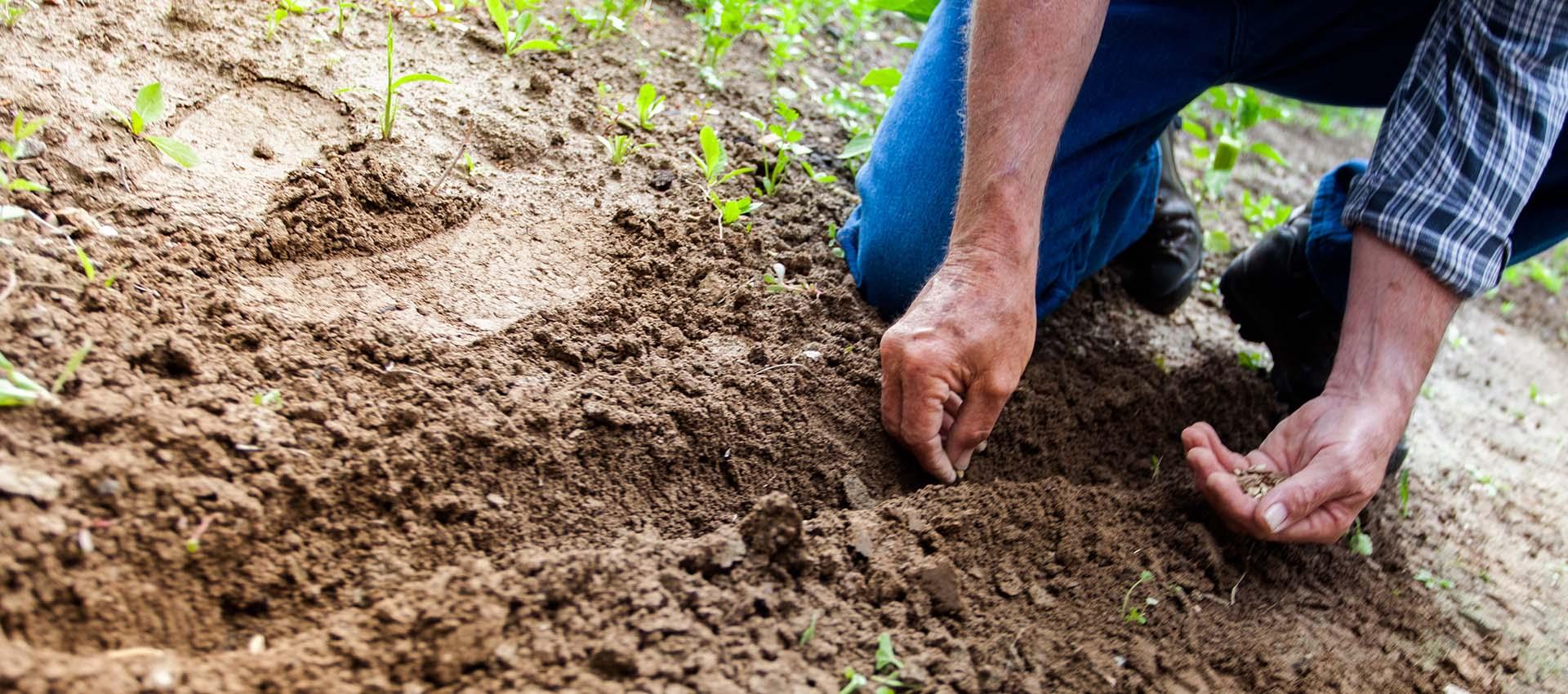 Ideal Agri Search Pvt  Ltd
